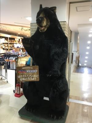 Bear2_20200806201401
